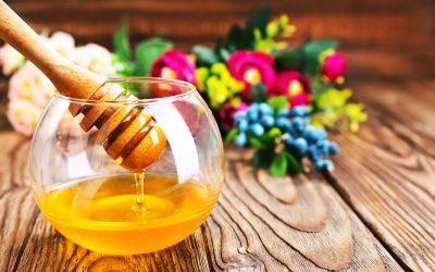 Alles über Honig