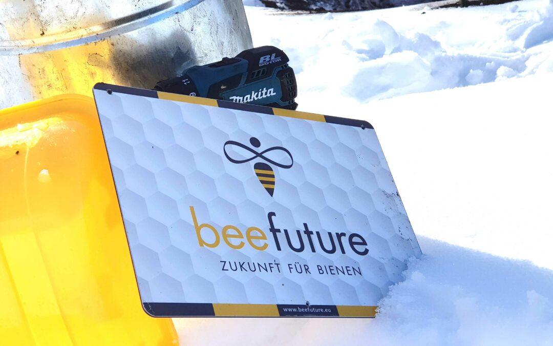 Wie überstehen die Bienen den Winter?